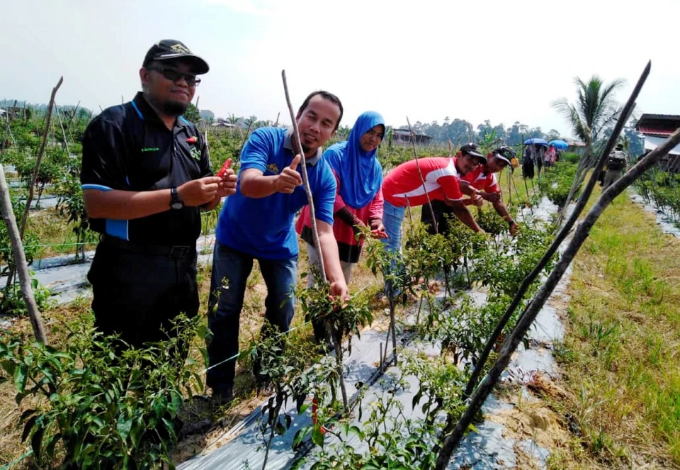 News: Zakat Builds Chili Projects inMalaysia
