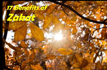 17 Benefits ofZakat.